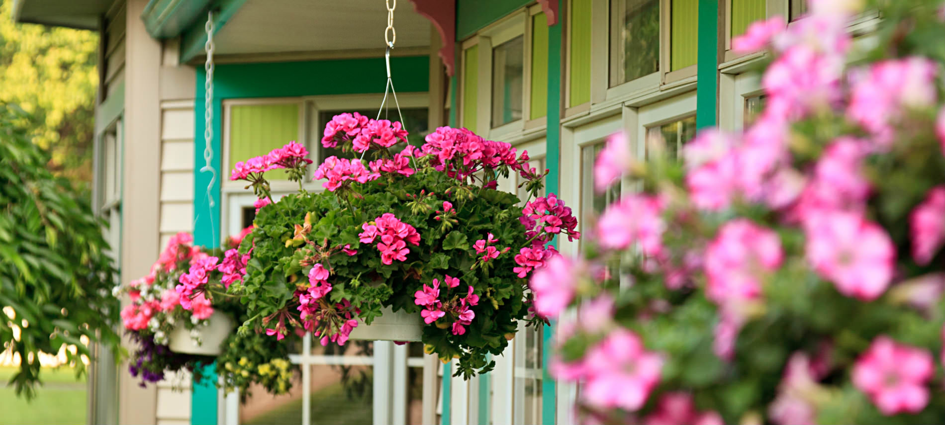 Hanging pink flowers with greenery on porch, yellow house with green trimmed windows