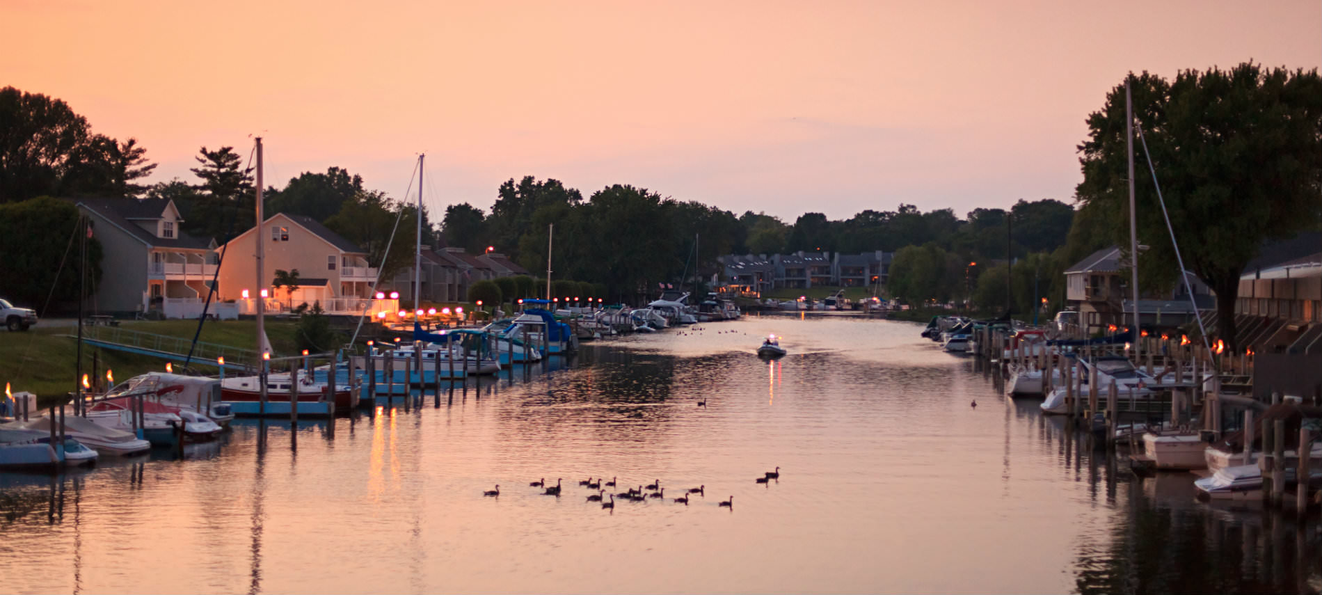 Marina at dusk with ducks swimming and boats docked, green trees in back, white building