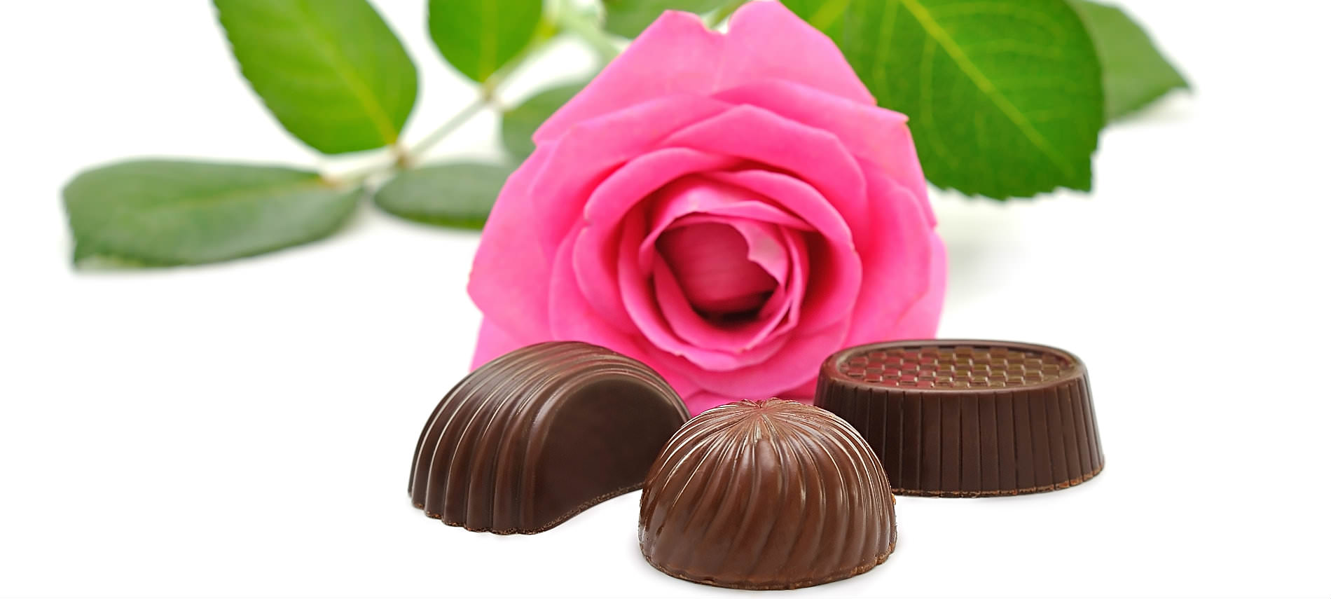 Three pieces of chocolate candy with pink rose and green leaves laying.